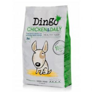 dingo-chicken-daily
