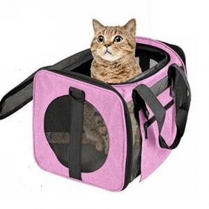 Bolso y transportin para gato
